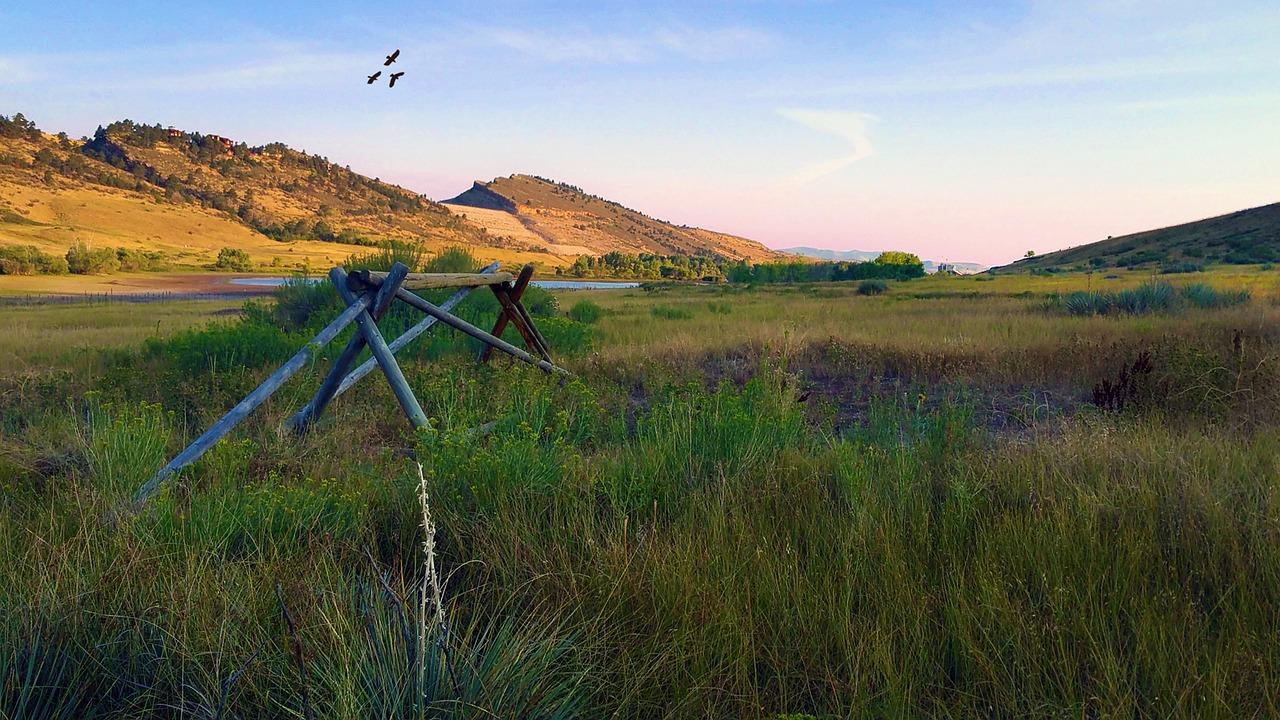 pineridge-natural-area-1596301_1280.jpg